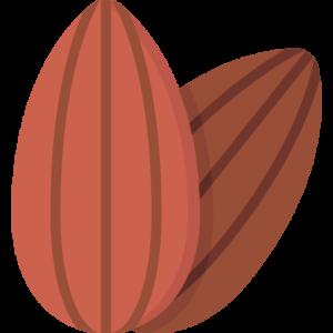 Organic Dried Fruits
